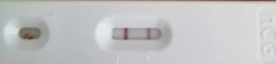 Hamilelik testi bozuk olduğunu nasıl anlarım
