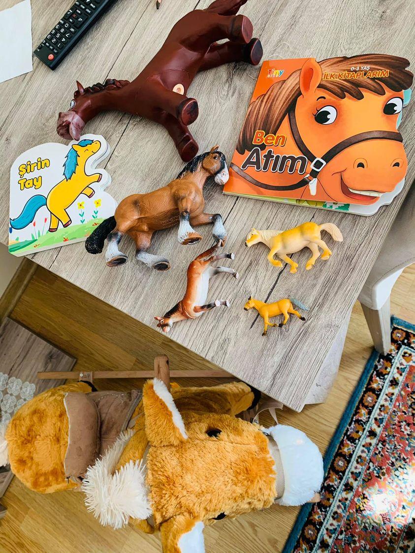 Bebeklerde oyuncak takıntısı