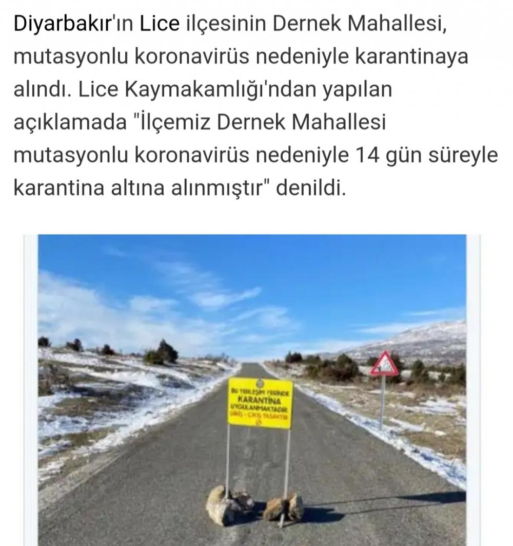 Türkiye'de mutasyonlu virüs